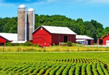 Farm Life Insurance